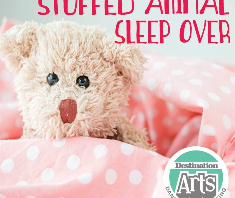 Join us for our Stuffed Animal Sleepover Benefiting Bella's Blessings!